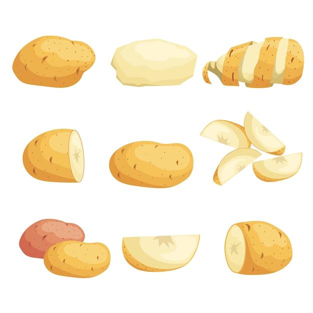 Set di patate del fumetto. intero, affettato, sbucciato. fette volanti. verdure fresche di fattoria. ideale per mercato, pacchetti. raccolta di illustrazioni. su sfondo bianco. Vettore Premium