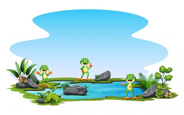 Cartone animato tre una rana in piedi intorno al piccolo stagno Vettore Premium