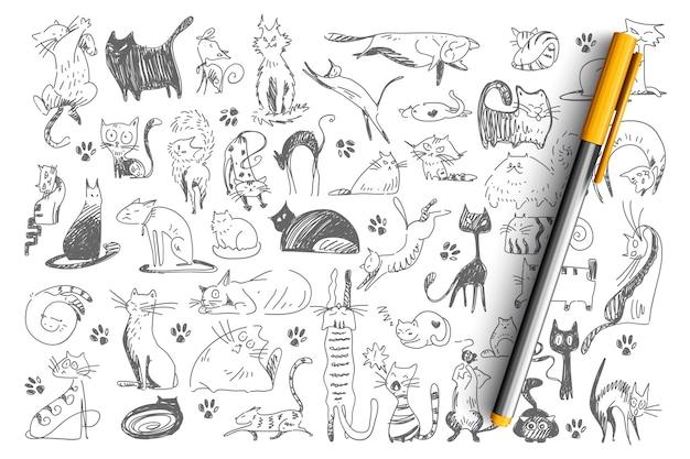 Insieme di doodle di gatti. raccolta di modelli infantili disegnati a mano animali domestici gattini gattino animali domestici Vettore Premium