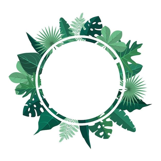 Cerchio verde pianta tropicale foglia estate confine cornice sfondo Vettore Premium