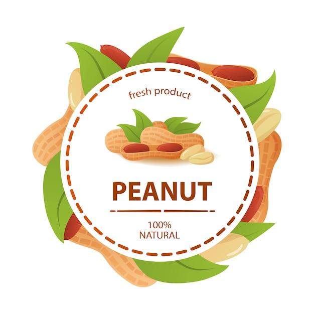 Etichetta circolare foglie di arachidi prodotto fresco 100% naturale. Vettore Premium