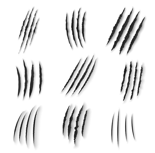 Gli artigli graffiano le unghie degli animali selvatici strappano, frammenti di zampe di tigre, orso o gatto su sfondo bianco Vettore Premium