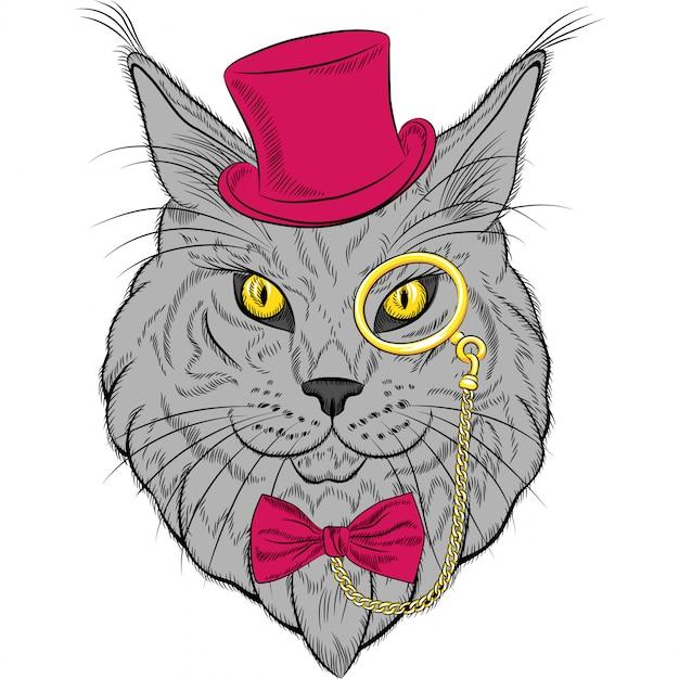 Ritratto del primo piano dei pantaloni a vita bassa del gatto di maine coon Vettore Premium