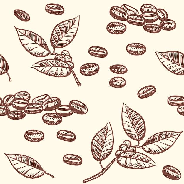 Chicchi di caffè e foglie, caffè espresso, modello senza cuciture di vettore del cappuccino nello stile di schizzo Vettore Premium
