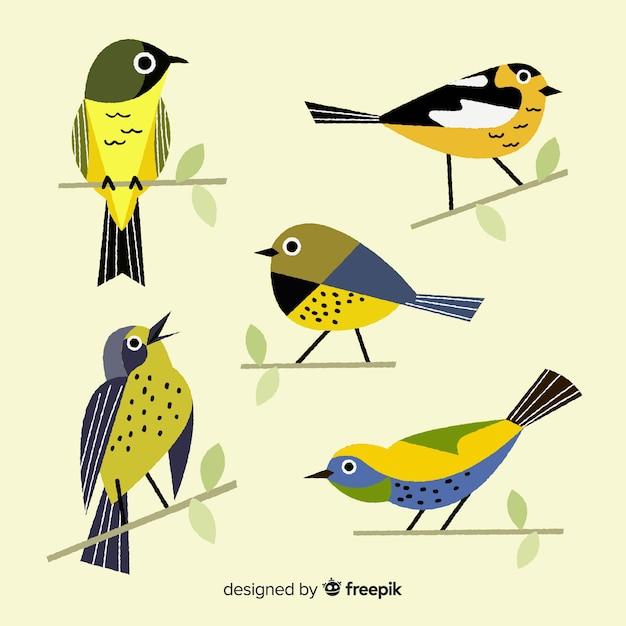 Collezione di uccelli disegnati a mano Vettore Premium