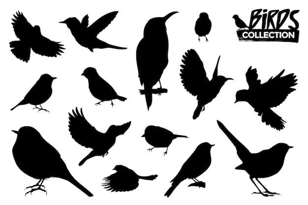 Raccolta di sagome di uccelli isolati. risorse grafiche. Vettore Premium