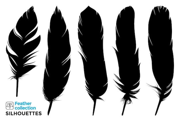 Raccolta di sagome isolate di piume di uccelli. Vettore Premium