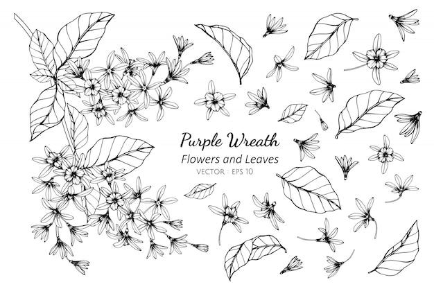 Insieme della raccolta del fiore porpora della corona e foglie che disegnano illustrazione. Vettore Premium