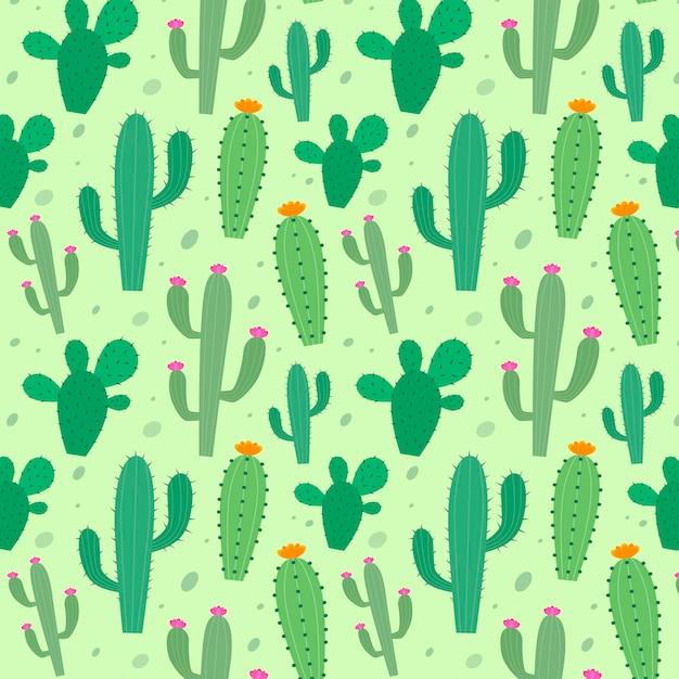 Modello di cactus colorato Vettore Premium