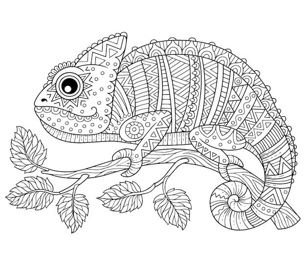 Libro da colorare per adulti, camaleonte contorno su un ramo su sfondo bianco. disegni e piccoli dettagli per colorare Vettore Premium