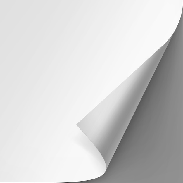 Angolo arricciato di carta bianca su sfondo grigio Vettore Premium