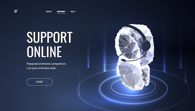 Pagina di destinazione online del servizio clienti Vettore Premium