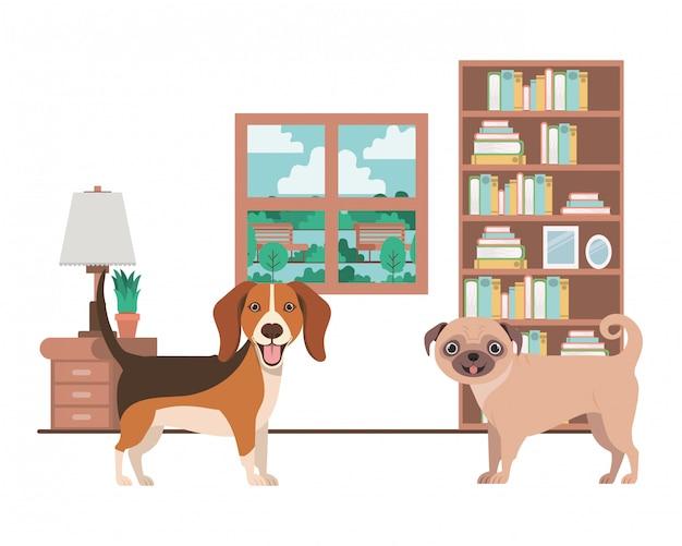 Cani carini e adorabili in salotto Vettore Premium