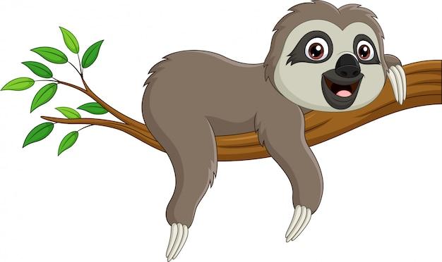 Bradipo sveglio del bambino sul ramo di albero Vettore Premium