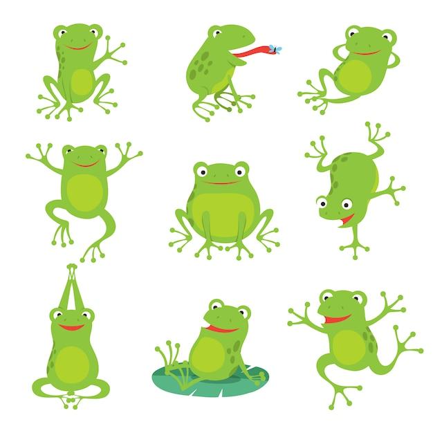 Rane simpatico cartone animato. rospo gracchiante verde sulle foglie del loto in stagno Vettore Premium