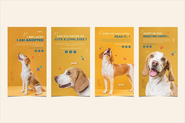 Il cane sveglio adotta le storie di instagram di un animale domestico Vettore Premium