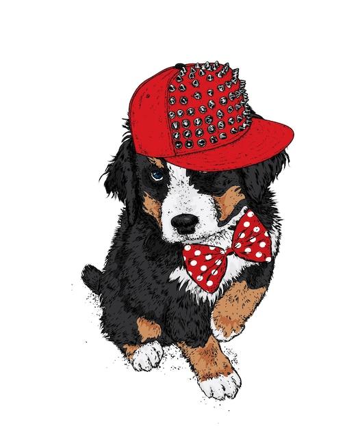Cane carino in un berretto e fiocco. Vettore Premium