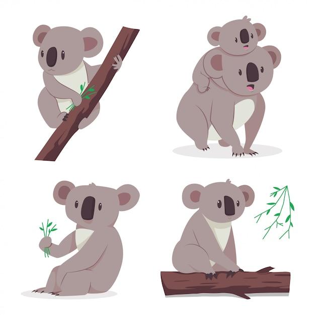 Orso di koala sveglio con un bambino su un albero di eucalyptus. set piatto di cartone animato di personaggi animali isolato su sfondo bianco. Vettore Premium