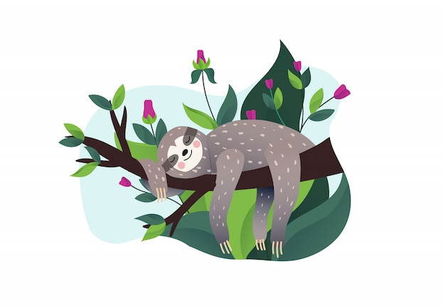Bradipo pigro sveglio che dorme su un ramo dell'albero tropicale. stile cartoon, illustrazione rallenta le lettere di citazione. Vettore Premium