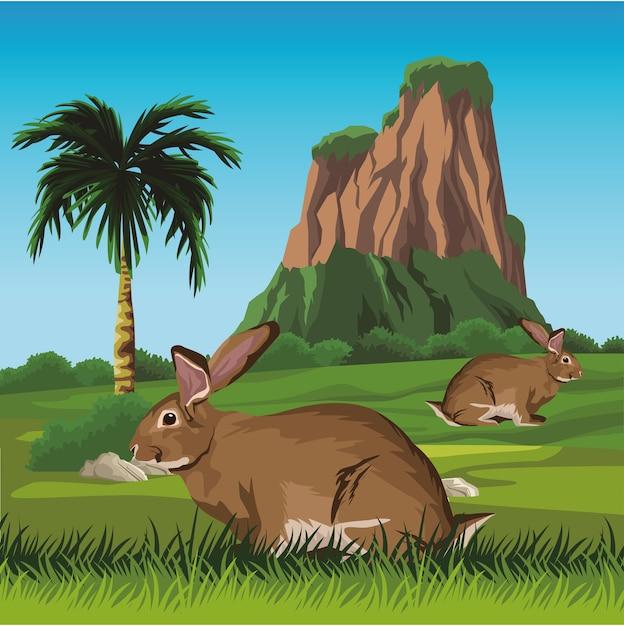 Simpatici conigli selvatici nel paesaggio Vettore Premium