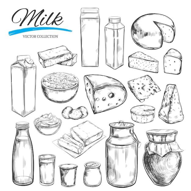 Raccolta di prodotti lattiero-caseari Vettore Premium