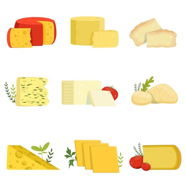 Diversi tipi di pezzi di formaggio, tipo popolare di illustrazioni di formaggio Vettore Premium