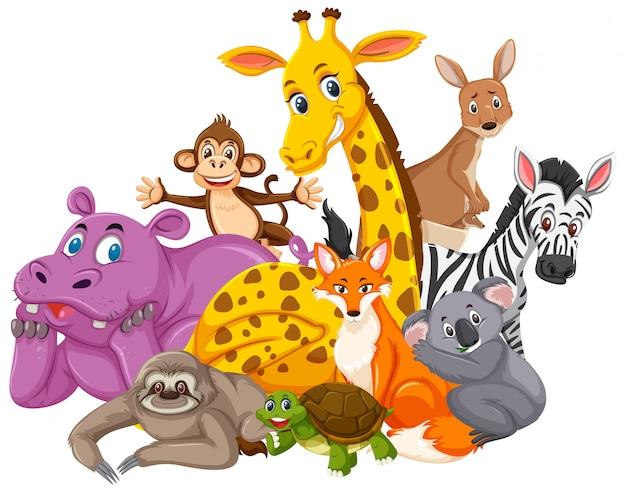 Diversi tipi di animali selvatici su bianco Vettore Premium