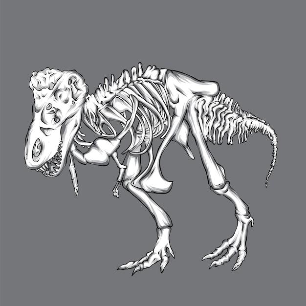 Scheletro di dinosauro. Vettore Premium