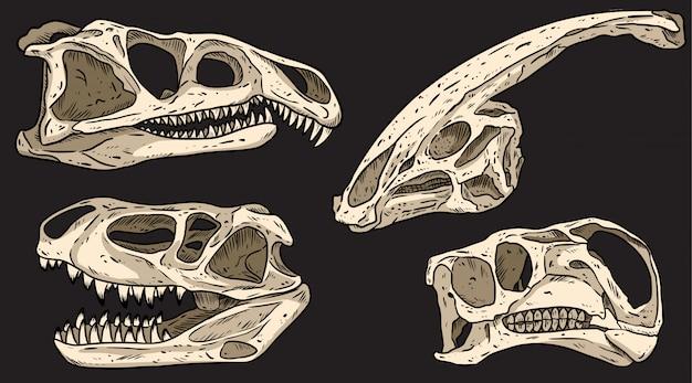Dinosauri su un bordo nero disegnato a mano teschi colorati scarabocchi. raccolta di immagini di fossili carnivori ed erbivori. illustrazione di riserva Vettore Premium