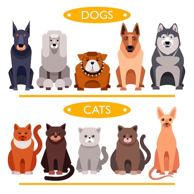 Cani e gatti. insieme di vettore del fumetto Vettore Premium