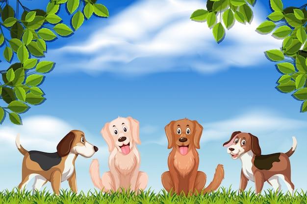 Cani nella scena del parco Vettore Premium