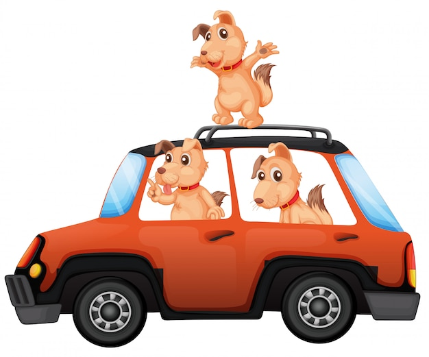 Cani in sella a una macchina su sfondo bianco Vettore Premium