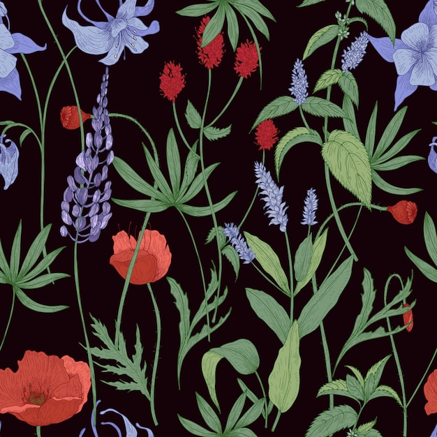 Modello senza cuciture botanico elegante con fiori selvatici ed erbe sul nero Vettore Premium