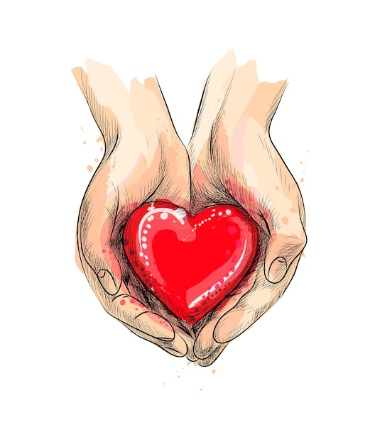 Mani femminili che danno cuore rosso da una spruzzata di acquerello, schizzo disegnato a mano. illustrazione di vernici Vettore Premium