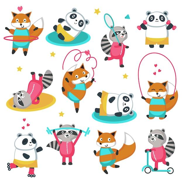 Fitness panda procione foxicon set Vettore Premium