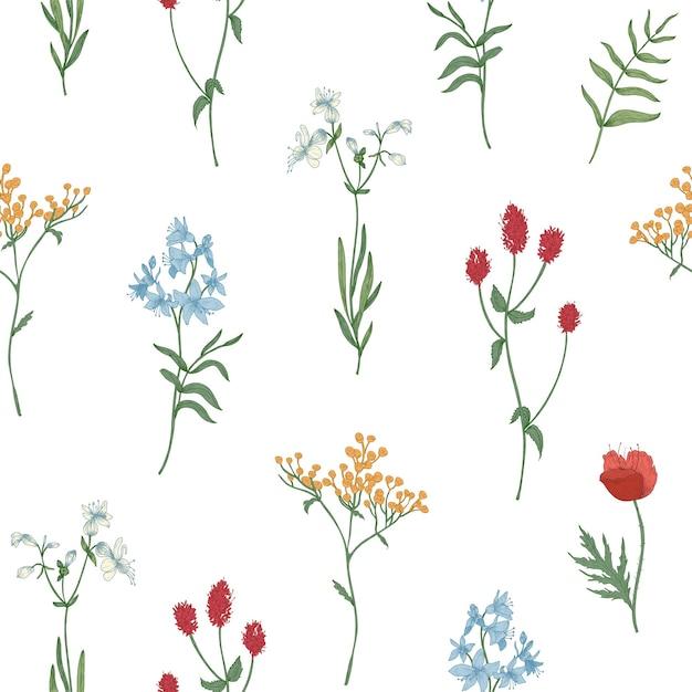 Motivo floreale senza soluzione di continuità con fiori che sbocciano selvatici ed erbe fiorite su bianco Vettore Premium