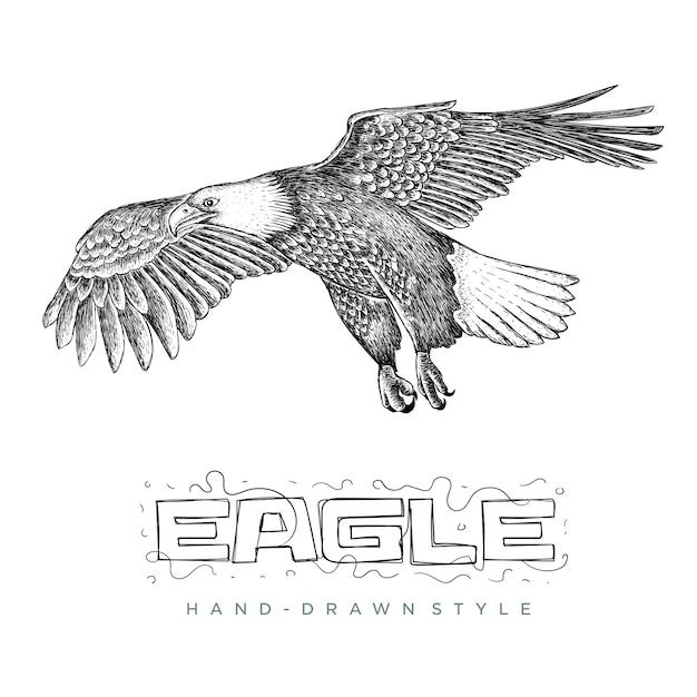 Vettore di aquila in volo. illustrazioni di animali disegnati a mano Vettore Premium