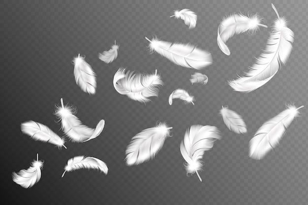 Piume volanti. caduta roteato soffice cigno bianco realistico, colomba o ali d'angelo flusso di piume, collezione di piume di uccelli morbidi Vettore Premium