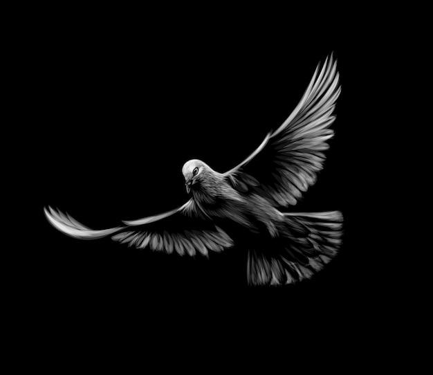Volare colomba bianca su sfondo nero. illustrazione Vettore Premium