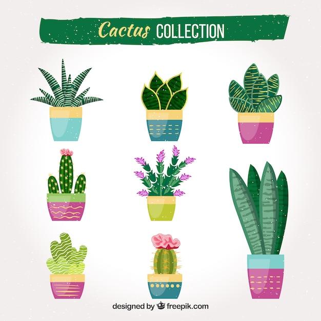 Cactus divertente con stile colorato Vettore Premium