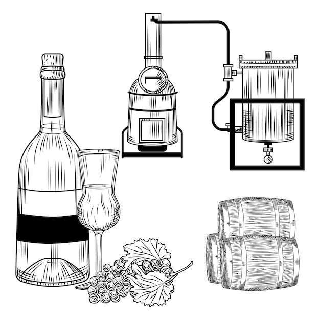 Grappa impostata su sfondo bianco. alcol italiano in bottiglia stile incisione retrò, vetro, uva, alambicco. illustrazione d'epoca. Vettore Premium