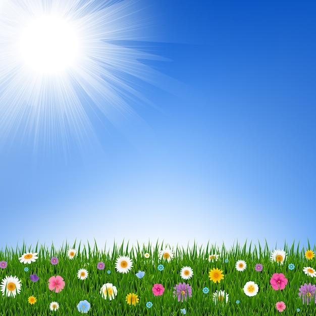 Erba e fiori confine e cielo Vettore Premium