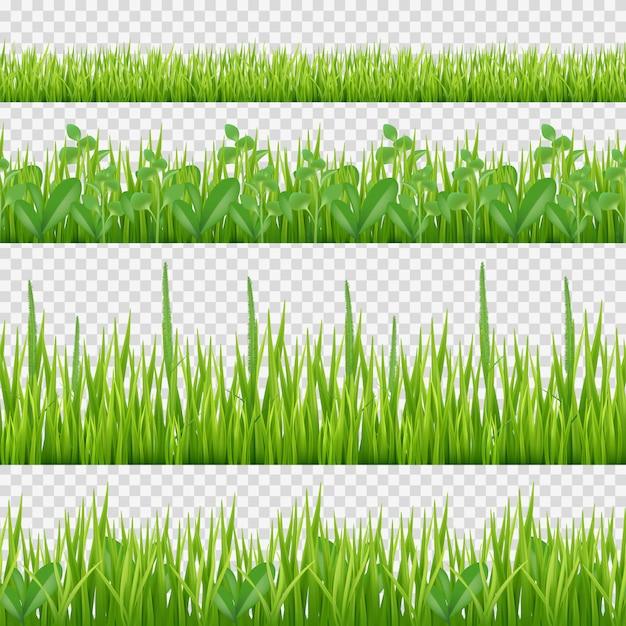 Modello di erbe di erba. fondo senza cuciture orizzontale delle foglie e delle erbe di simboli della natura Vettore Premium