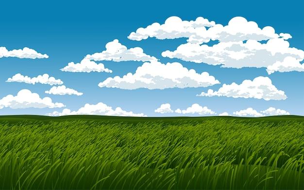 Campo di erba verde al giorno nuvoloso Vettore Premium