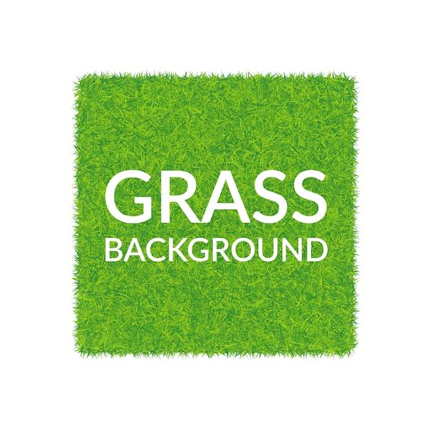 Sfondo quadrato di erba verde. Vettore Premium