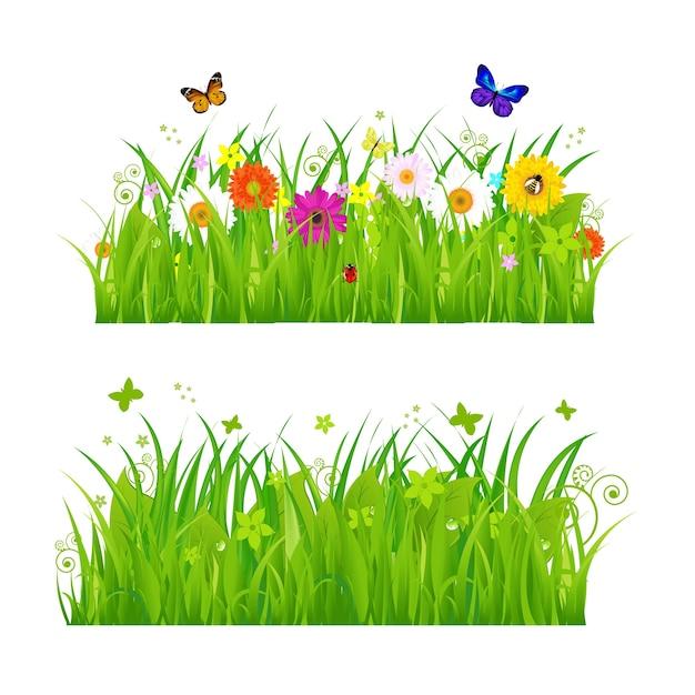 Erba verde con fiori e insetti, su sfondo bianco, illustrazione Vettore Premium