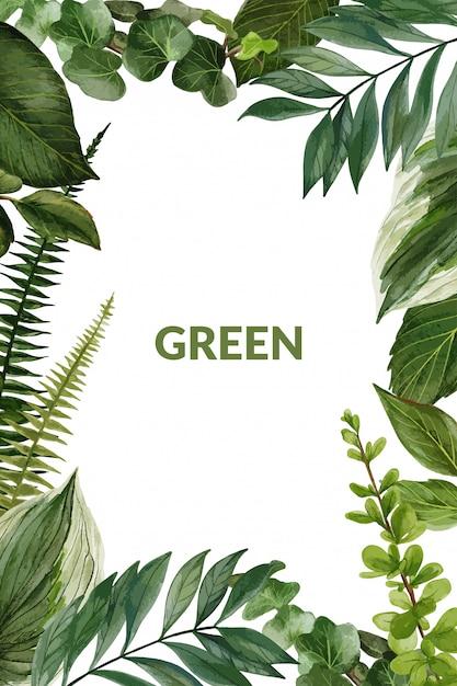Cornice verde e felci, vettore disegnato a mano Vettore Premium