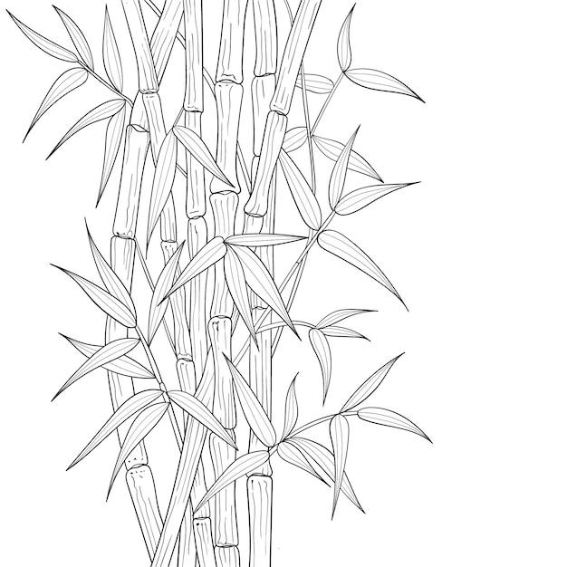 Illustrazione di bambù disegnata a mano. Vettore Premium