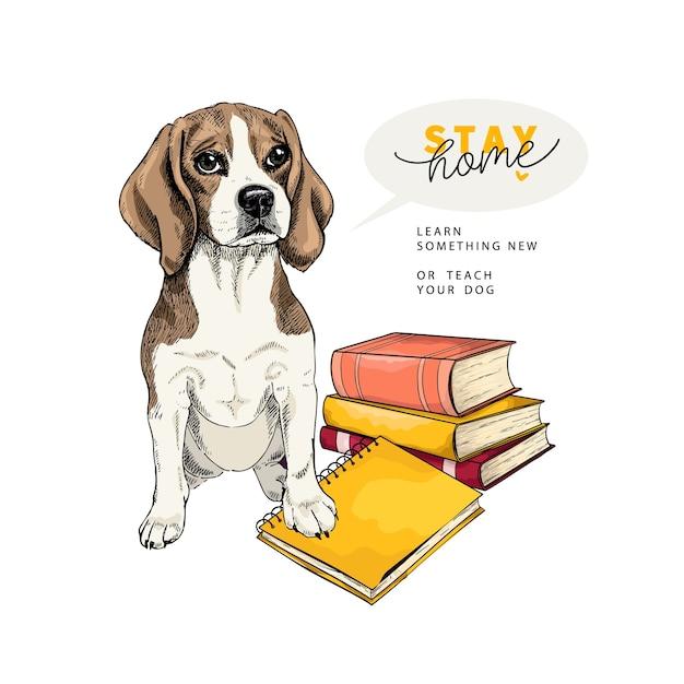 Cane beaglel disegnato a mano si siede con libri e un taccuino. Vettore Premium