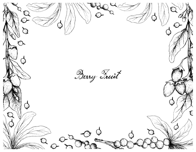 Cornice disegnata a mano di bacche di goji e frutta di daphne di febbraio Vettore Premium